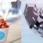 Wonderpots sucht Frozen-Yogurt-Crowdinvestoren, Veganz sucht Restaurant-Betreiber